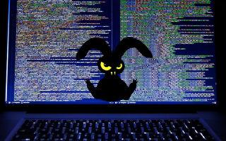 Вирус-шифровальщик Bad Rabbit: новая угроза вашему ПК