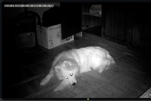 Ночная съемка камеры видеонаблюдения Atis AI-361