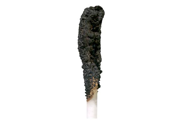 Результат воздействия возгорания на кабель, который покрыт огнезащитной краской