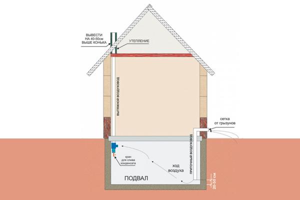 Схема устройства цокольного помещения