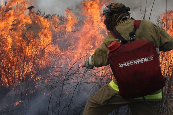 Тушение полевого пожара ранцевым огнетушителем