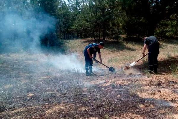 Забрасывание пламени землей при тушении низового лесного пожара