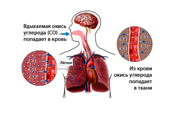 Схема отравления человека угарным газом