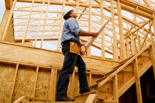 Предварительное обследование деревянных конструкций