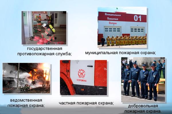 Виды пожарных организаций